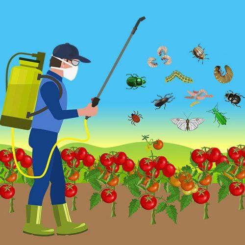 Productos para la protección de cultivos y alimentos.